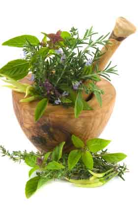 Healing herbs and edible flowers